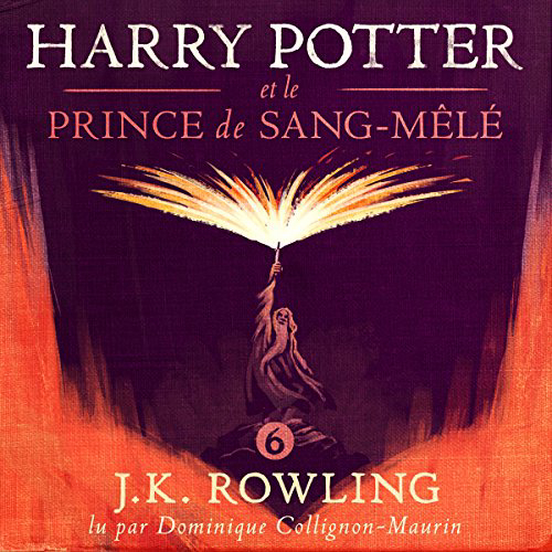 Harry Potter Et Le Prince De Sang-mêlé (harry Potter 6)